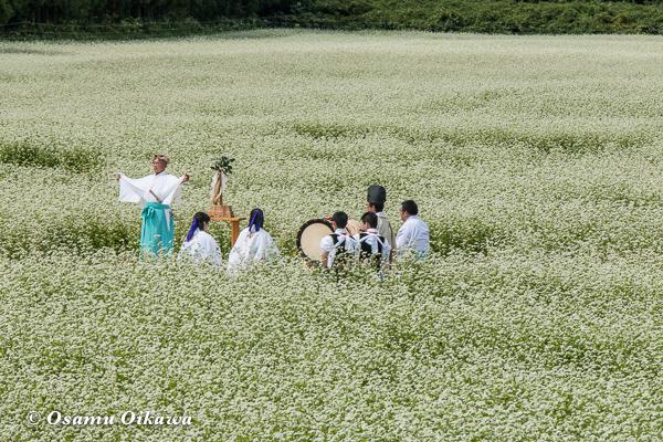 福島町 千軒地区 そばの花鑑賞会 松前神楽 山神舞