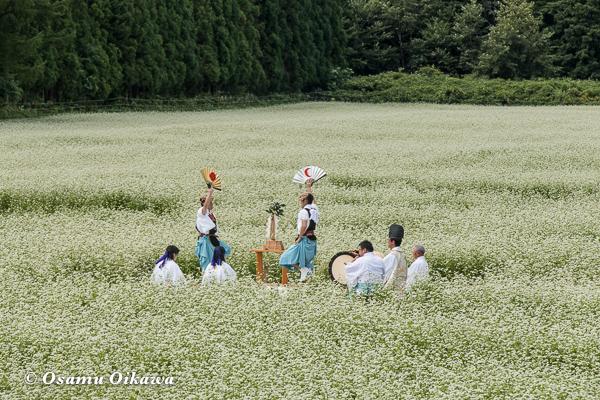 福島町 千軒地区 そばの花鑑賞会 松前神楽 鬼形舞